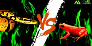 Różnica między poison i venom